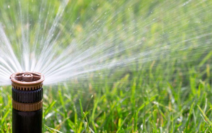 Rasen bewässern